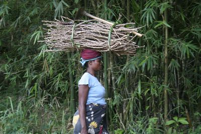 Congolese woman carrying firewood on her head