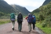 Backpackers on the road
