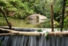 Jungle pool with small waterfall