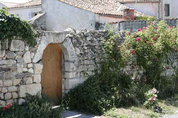 Garden wall in Le Brouage