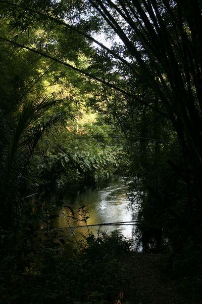 Lekedi river