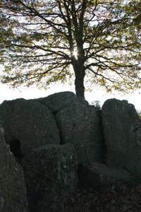 Prehistoric dolmen in Wibrin